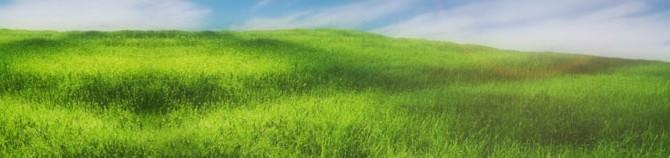 Jak zmierzyć ilość i skład biogazu ?